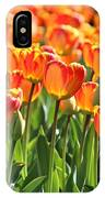 Spring In Beantown IPhone Case