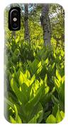 Spring In The Wasatch IPhone Case