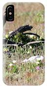 Spring In Western South Africa IPhone Case