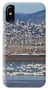 Spring Migration IPhone Case