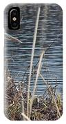 Spring Morning At The Marsh IPhone Case