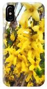 Spring - Sprig Of Forsythia IPhone Case