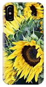 Spring Sunflowers IPhone Case