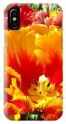 Spring Tulip Flowers Art Prints Yellow Red Tulip IPhone Case