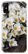 Springtime Abundance - A Bouquet Of Pure White Crocuses IPhone Case