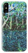 Springtime In Wekiva IPhone Case
