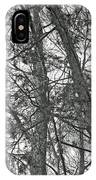 Springtime Woods - New Jesey Pine Barrens - Black And White IPhone Case