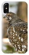 Spruce Grouse In The Snow IPhone Case