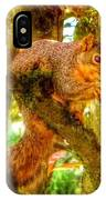 Squirrel Away Acorn IPhone Case