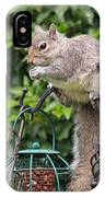 Squirrel Eating Nuts IPhone Case