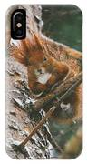Squirrel In A Tree IPhone Case