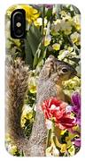 Squirrel In The Botanic Garden-dallas Arboretum V4 IPhone Case