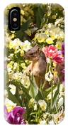 Squirrel In The Botanic Garden-dallas Arboretum V6 IPhone Case