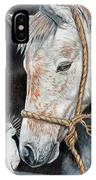 Stablemates IPhone Case