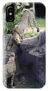 Stand Off IPhone Case
