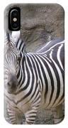 Standalone Zebra IPhone Case