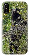 Standing Black Bear IPhone Case