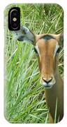Standing In The Grass Impala Antelope  IPhone Case