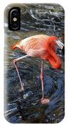 Standing On Long Legs IPhone Case