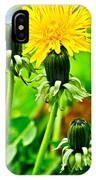 Standing Tall IPhone X Case