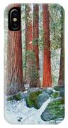 Standing Tall - Sequoia National Park IPhone Case
