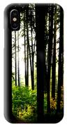Stanley Park Triptych Right IPhone Case