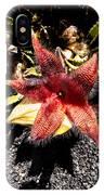 Stapelia Grandiflora Starfish Cactus IPhone Case