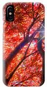 Star Light Thru Maple IPhone Case