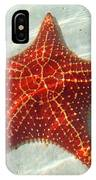 Starfish 3 Of Bottom Harbour Sound IPhone Case