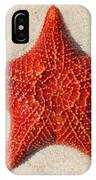 Starfish 4 Of Bottom Harbour Sound IPhone Case