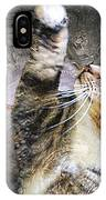 Starry Night Kitty Style - Featured  In Comfortable Art Group IPhone Case
