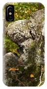 Stone Face IPhone Case