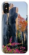 Stone Forest IPhone Case