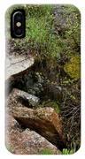 Stone Slid Away IPhone Case