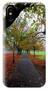 Stray Beauty In Autumn No 2 IPhone Case