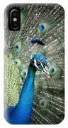 Stunning 1 IPhone Case