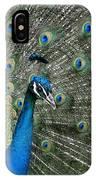 Stunning 2 IPhone Case