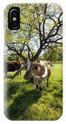Stunning Texas Longhorns IPhone Case