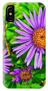 Subalpine Daisy By Vidae Falls In Crater Lake National Park-oregon  IPhone Case