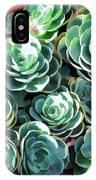 Succulent 13 IPhone Case