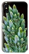 Succulent Bloom IPhone Case