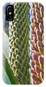 Succulents IIi IPhone Case
