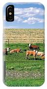 Summer Furrows IPhone Case