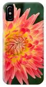 Summer Garden Joy IPhone Case