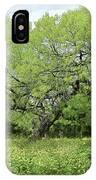 Summer Mesquite Tree IPhone Case