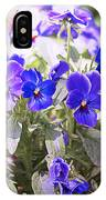 Summer Pansies IPhone Case