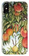 Summer Peaches IPhone X Case
