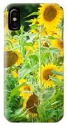 Summer Sunflowers IPhone Case