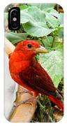 Summer Tanager IPhone Case