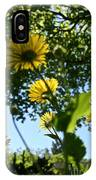 Summer Viewpoint IPhone Case